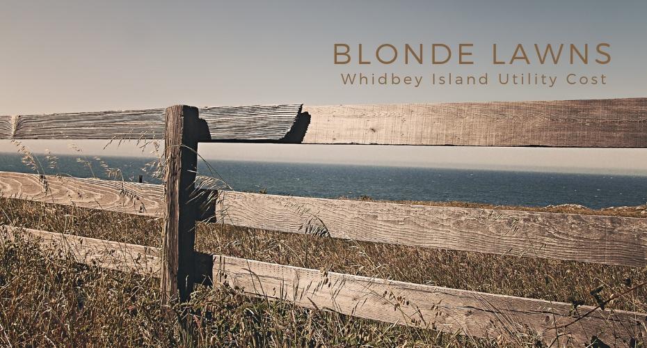 blonde lawns, yards, summer, resource, whidbey islan , oak harbor