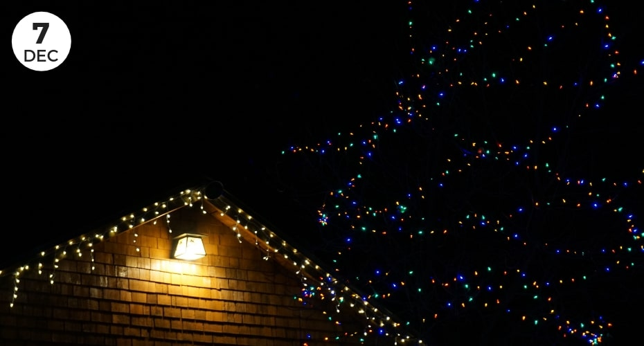 Holiday lights, tour, Whidbey island, Oak harbor, things to do on Whidbey, Real Estate, Island Transit